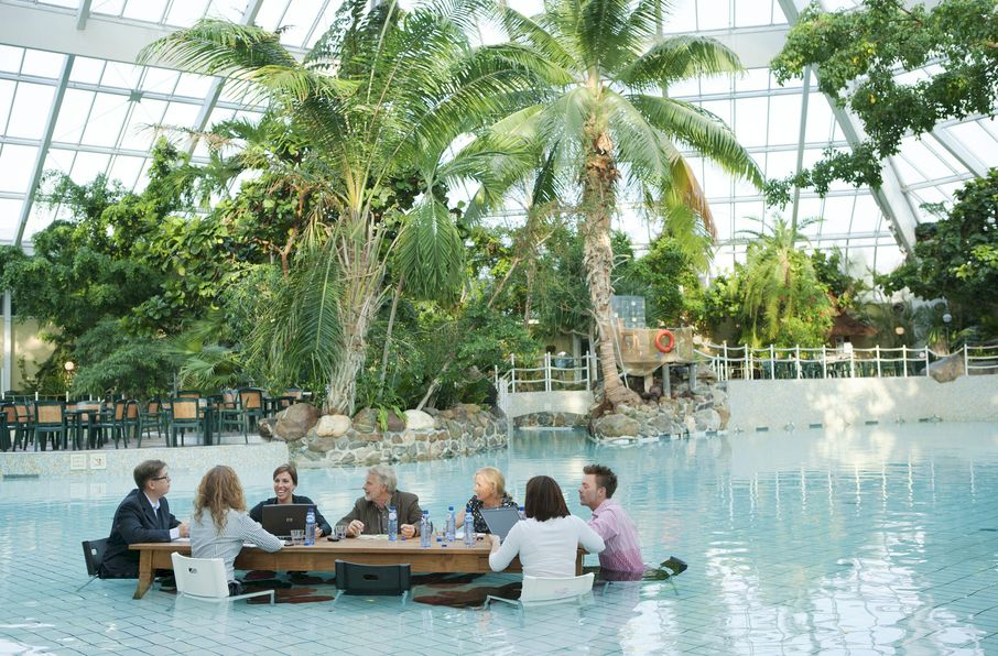 a company analysis of center parcs Center parcs europe situation center parcs is europe's market leader in the field of short break holidays the company operates fifteen vacation parks in the.