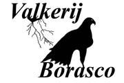 Valkerij Borasco