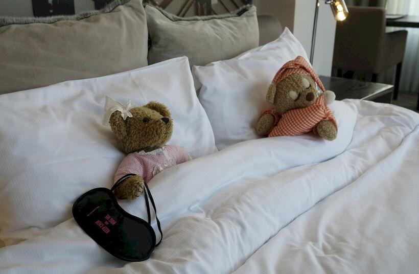 Van berenjacht tot berenpracht in het Terhills Hotel  - Foto 1