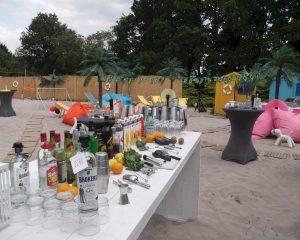 Ontdek 3 unieke cocktailconcepten voor jouw zomerevent