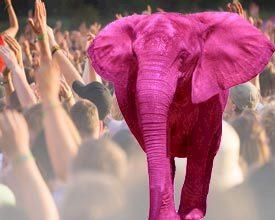 Roze olifant tegen alcohol en drugs