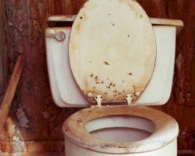 Horecagast gruwt van vies sanitair