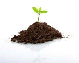 95% organisatoren is milieubewust