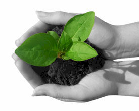 Evenementenbureaus passief op vlak van duurzaamheid