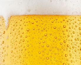 Festival legt 7km lange bier-pijplijn aan