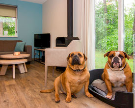 Landal Business Line faciliteert succesvolle event 'Doggy Days'