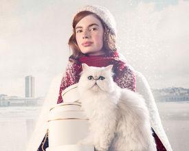 Winter is coming... Oostende heeft heel wat B2B mogelijkheden