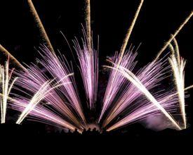 Geluidsarm vuurwerk van 7theaven is spectaculair én diervriendelijk